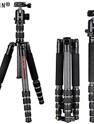 ieftine -bexin bx285c + k36 pentru stâlpul portabil de 165 cm, telefon mobil