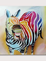 Недорогие -Hang-роспись маслом Ручная роспись - Животные Поп-арт Modern Без внутренней части рамки