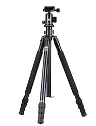 Недорогие -LITBest R1004+G10KX Назначение 168 cm На открытом воздухе Трипод Записывающая камера