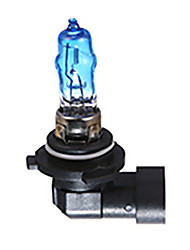 Недорогие -12 В 9005 100 Вт HOD супер белый свет 3000 К 6000 К Аврора галогенная лампа