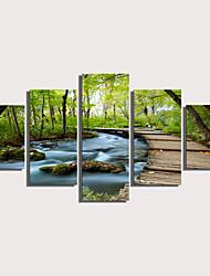 Недорогие -С картинкой Роликовые холсты Отпечатки на холсте - Пейзаж Цветочные мотивы / ботанический Modern 5 панелей Репродукции