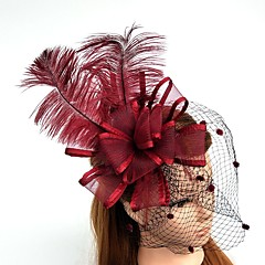 Tule Veer Net Fascinators Hoeden Net Sluier Helm