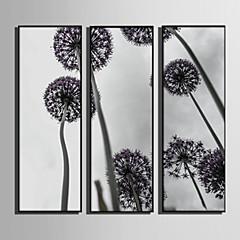baratos Quadros com Moldura-Floral/Botânico Botânico Ilustração Arte de Parede, Plástico Material com frame For Decoração para casa Arte Emoldurada Sala de Estar
