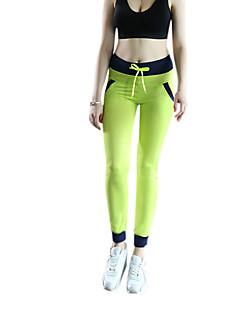 billiga Träning-, jogging- och yogakläder-Dam Baslager / Tights för jogging / Gymleggings - Blå, Grå, Frukt grön sporter Cykling Tights Sportkläder Snabb tork