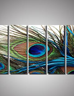Kanvas Baskı Manzara Hayvan Fotografik Romantik Beş Panelli Yatay Duvar Dekor For Ev dekorasyonu