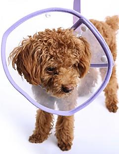 billiga Hundkläder-Katt Hund Halsband Hundkläder Enfärgad Svart Purpur Röd Blå Rosa Plast Kostym För husdjur Herr Dam Ledigt/vardag Semester Vindtät