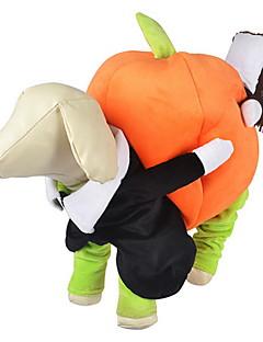 billiga Hundkläder-Hund Dräkter / Kostymer / Jumpsuits Hundkläder Pumpa Orange Tyg Kostym För husdjur Herr / Dam Cosplay / Halloween