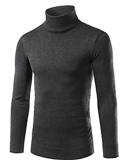 Men's Daily Going out Street chic Regular Pullover,Solid Turtleneck Long Sleeves Rayon Polyester Winter Fall Medium Stretchy