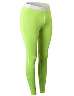 billiga Träning-, jogging- och yogakläder-Dam Tights för jogging / Gymleggings - Röd, Blå, Frukt grön sporter Cykling Tights Sportkläder Lättvikt, Fitness, Löpning & Yoga, Snabb