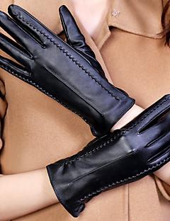 Χαμηλού Κόστους Women's Gloves-Γυναικεία Μονόχρωμο Μονόχρωμο / Αξεσουάρ / Χειμερινά Γάντια Μέχρι τον καρπό Ακροδάχτυλα Γάντια / Χειμώνας