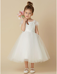Cheap flower girl dresses online flower girl dresses for 2018 a line knee length flower girl dress lace tulle short sleeve scoop neck with sash ribbon by lan ting bride mightylinksfo