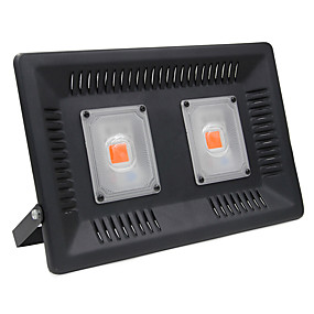 abordables Lampe de croissance LED-ZDM® 1pc 100 W 4000-4500 lm 2 Perles LED Luminaire croissant Rouge 220 V