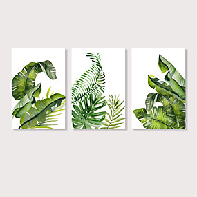 baratos Pinturas-Estampado Estampados de Lonas Esticada - Botânico Floral / Botânico Modern 3 Painéis Art Prints