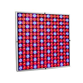 abordables Lampe de croissance LED-1 set 30 W 2560 lm 225 Perles LED Spectre complet Installation Facile Pour Greenhouse Hydroponic Luminaire croissant 85-265 V Maison / Bureau Serre de légumes