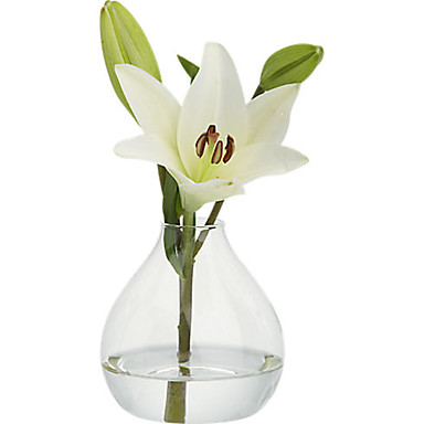 billige Borddekorasjoner-Materiale / Glass Borddekorasjon - Ikke-personalisert Vaser / Andre / Bord Alle årstider