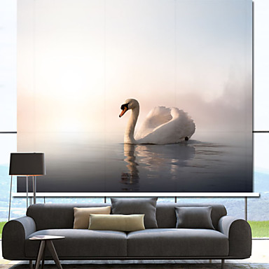 Graceful Swimming Swan Roller Shade