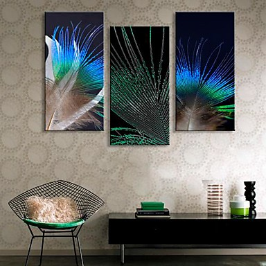 Stretched Canvas Art The Feathers of  Peacock  Set of 3