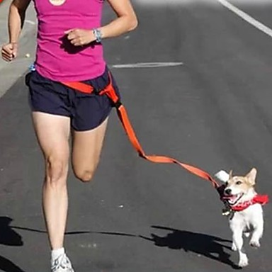 Câine Mâinile Leash Free Ajustabile / Retractabil Alergat Mâini Libere Mată Nailon Galben Rosu Verde Albastru Roz