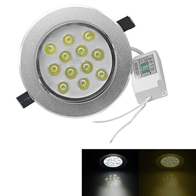 3000-3200/6000-6500lm 12 LED 비즈 고성능 LED 밝기조절가능 따뜻한 화이트 차가운 화이트 100-240V