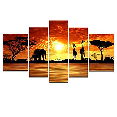 Kézzel festett Állatok bármilyen forma, Modern Vászon Hang festett olajfestmény lakberendezési Öt elem