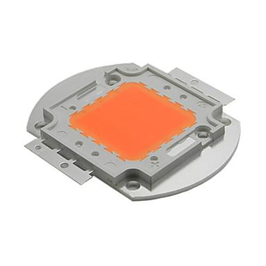 YWXLIGHT® 350 lm Kasvavat valonheittimet 1 ledit AC 220-240V