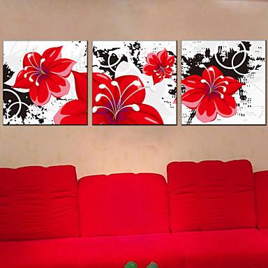 abordables Toiles-Imprimé Impression sur Toile - Botanique Trois Panneaux Art Prints