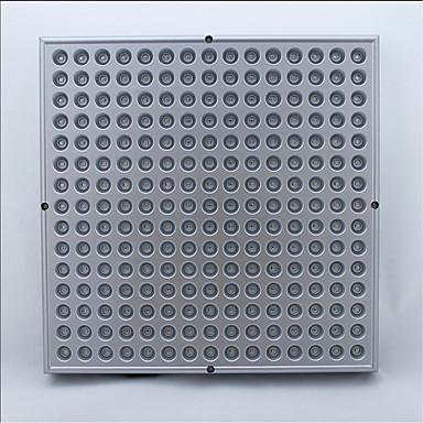 50W תאורה מתגברת לד 1800 lm אדום / כחול SMD 2835 דקורטיבי AC 85-265 V 1 יחידות