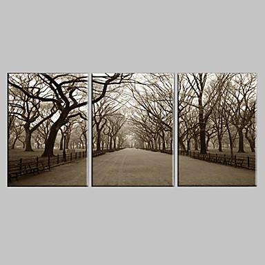 Stretched Canvas Art Landscape The Central Park Set of 3