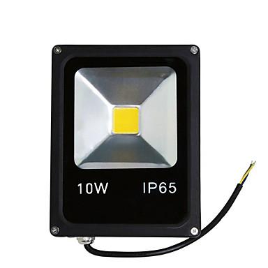 10w warm / koel wit kleur geleid schijnwerper spot buitenverlichting (AC85-265V)