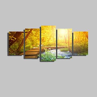Fénykép nyomat Landscape Romantikus Szabadidő Botanikus Klasszikus Modern,Öt elem Vízszintes Nyomtatás fali dekoráció For lakberendezési