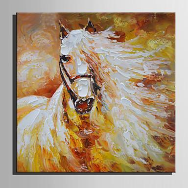Pintura a Óleo Pintados à mão - Animais Retro Tela de pintura / Lona esticada