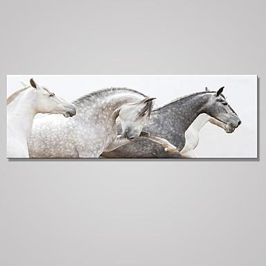 Reprodukce maleb na plátně Zvíře Klasický Pastýřský,Jeden panel Plátno Horizontálně Tisk Art Wall Decor For Home dekorace