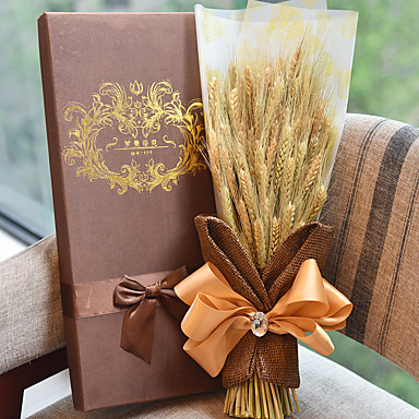 Barley Harvest Season Gift Box Plant For Mother's Day Gift