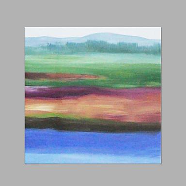 Hang-Painted öljymaalaus Maalattu - Kukkakuvio / Kasvitiede Taiteellinen Abstrakti Moderni / nykyaikainen Kangas