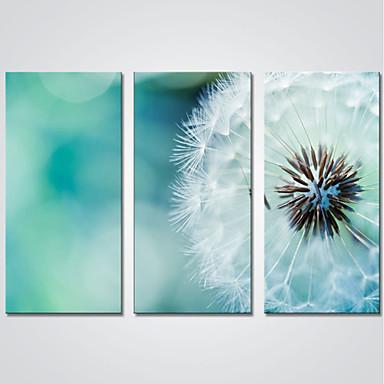 Kifeszített vászonnyomat Három elem Vászon Vízszintes Nyomtatás fali dekoráció lakberendezési