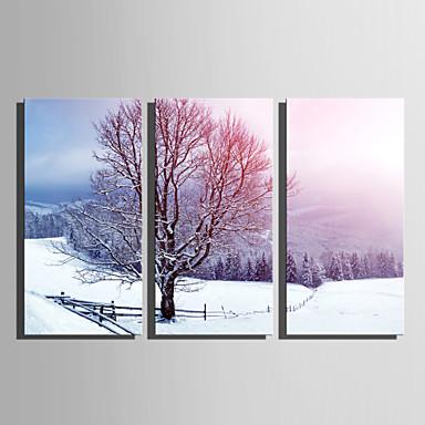 levne Obrazy a nástěnné dekorace-Grafika Válcované plátno - Krajina Zima Moderní Tři panely Umělecké tisky