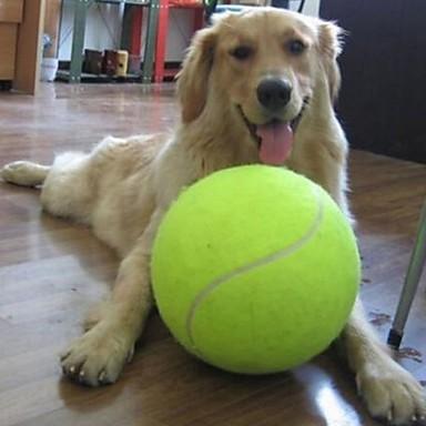 534d4631efd8 Μπάλα Παιχνίδια για μάσημα Φιλικό προς τα Κατοικίδια Μεικτό Υλικό Για  Σκυλιά Γάτες Κατοικίδια