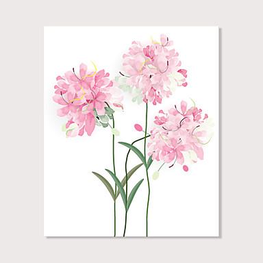 abordables Toiles-Imprimé Impression sur Toile - Nature morte A fleurs / Botanique Moderne Art Prints