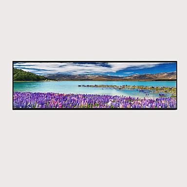 abordables Toiles-Imprimé Impressions sur toile roulées - Botanique Traditionnel Art Prints