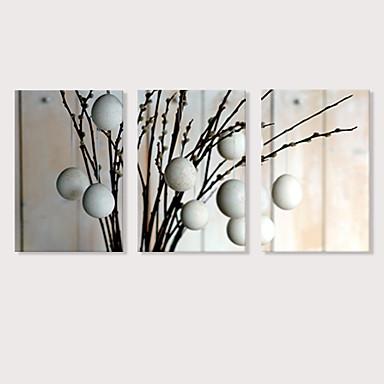 billige Trykk-Trykk Strukket Lerret Trykk - Fotografisk Blomstret / Botanisk Moderne Tre Paneler Kunsttrykk