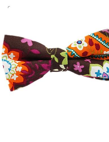 Unisex Floral / Bloc Culoare Funde Petrecere / De Bază Papion Cravată