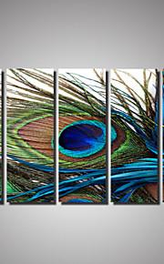Impressions sur toile roulées Paysage Animaux Romance Photographie Cinq Panneaux Format Horizontal Décoration murale Décoration