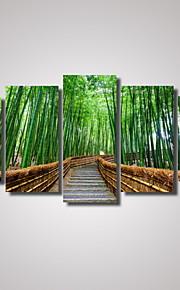 Tirages Photographique Paysage Romance Loisir Botanique Architecture Photographie Voyage Moderne, Cinq Panneaux Format Horizontal Imprimé
