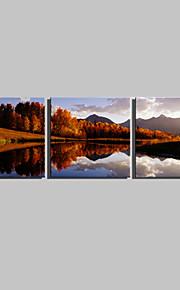 Stretchad Kanvastryck Landskap Tre paneler Fyrkantig Tryck väggdekor Hem-dekoration