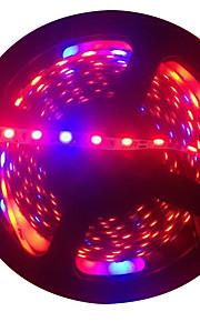 300 светодиоды Светодиодная лента 5M Синий Красный Можно резать DC 12V