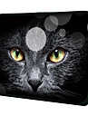 """Black Cat Face"" model Nylon Case Material impermeabil cu maneci de 11 ""/ 13"" / 15 ""Laptop si Tablet"