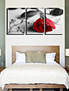 Intins Canvas Art Roses Lonely Floral Set de 3