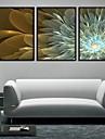 panza Set Floral/Botanic Modern Tradițional,Trei Panouri Orizontal print Arta Decor de perete For Pagina de decorare