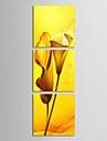 Intins Canvas Art Crini galben flori Set de 3
