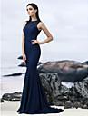 Trompetă / Sirenă Iluzii Mătura / Trenă Dantelă Seară Formală Gală Elegantă Rochie cu Dantelă de TS Couture®